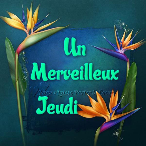 MERVEILLEUX JEUDI....