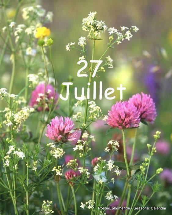 27 JUILLET... VENDREDI...
