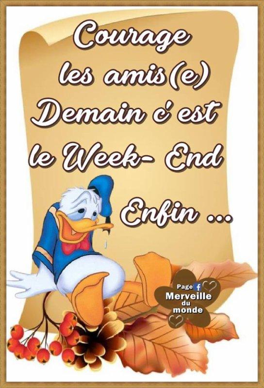 BON VENDREDI... BON WEEK END...