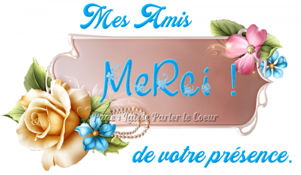 MERCI MES AMI(E)S...