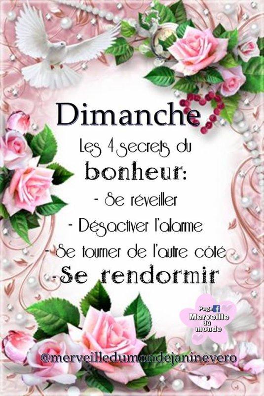 BON DIMANCHE...