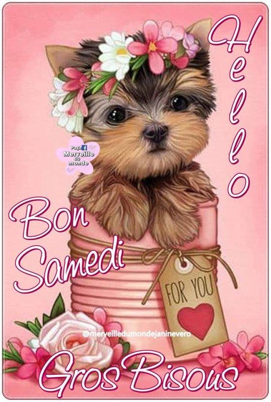 HELLO BON SAMEDI...