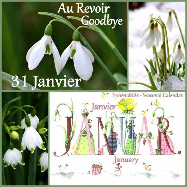 AU REVOIR JANVIER...