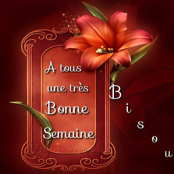 BONNE SEMAINE...