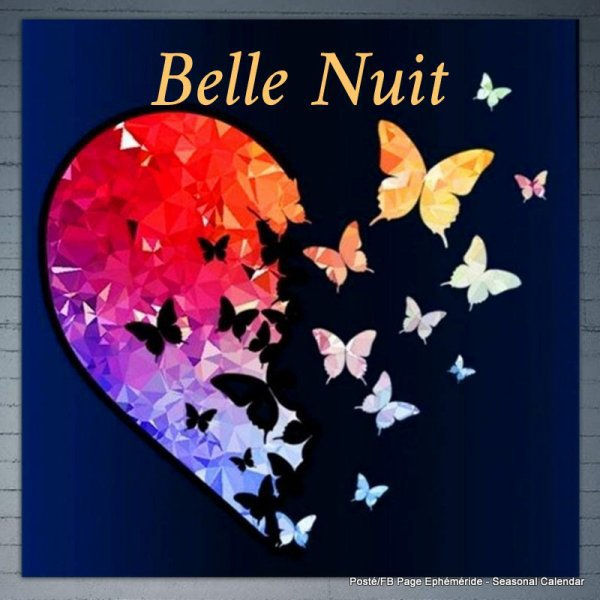 BELLE NUIT...
