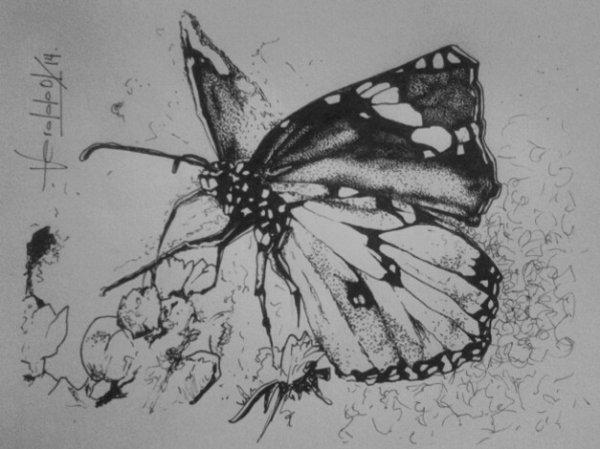 papillon pour mamy...