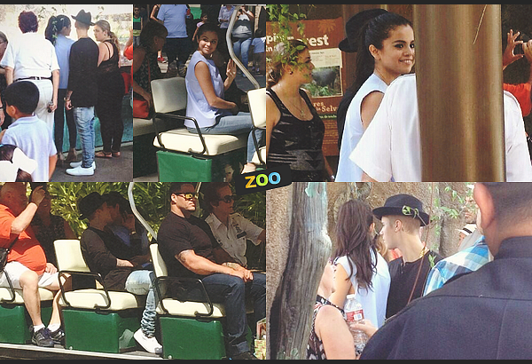 ✿ Resto, musique & zoo.