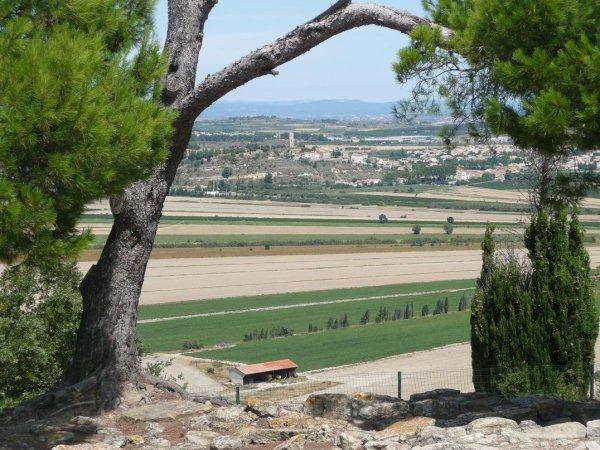 L'oppidum d 'Enserune