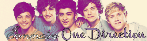 Sommaire One Direction