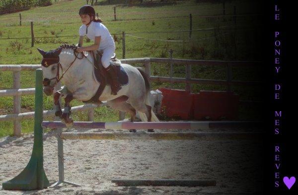 L'équitati0n est le seul sport Individuel qui se pratique à Deux .♥