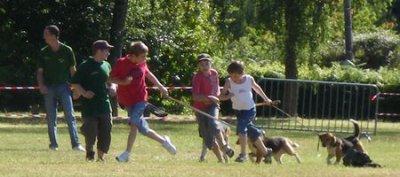 L'Association des Jeunes Chasseurs du Morbihan