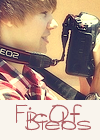 Photo de FicOfBiebs