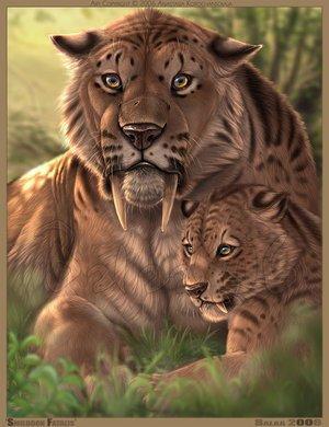 Tigre a dent de sabre