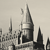 Photo de Team-Hogwarts