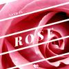 La Vie en Rose my Friends
