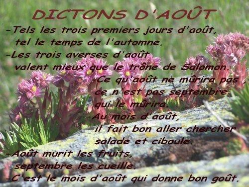dicton d' Aout