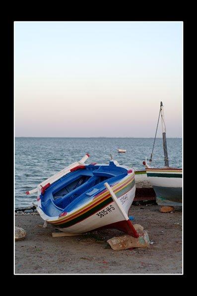 Une plage dans le sud Tunisien...