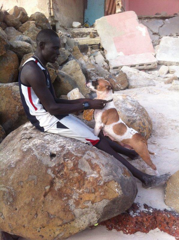 J'aime bien mon chien Pitbul