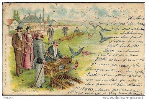 un lacher de pigeons 1905 !  j'aurai du y penser pour les voeux 2012