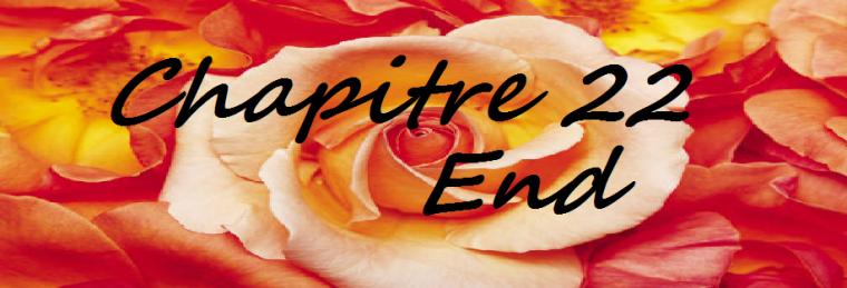 Chapitre 22 END