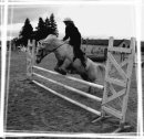 Photo de x-equi-passion-x3