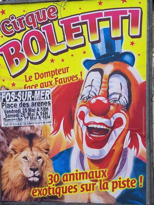 LE CIRQUE BOLETTI !!