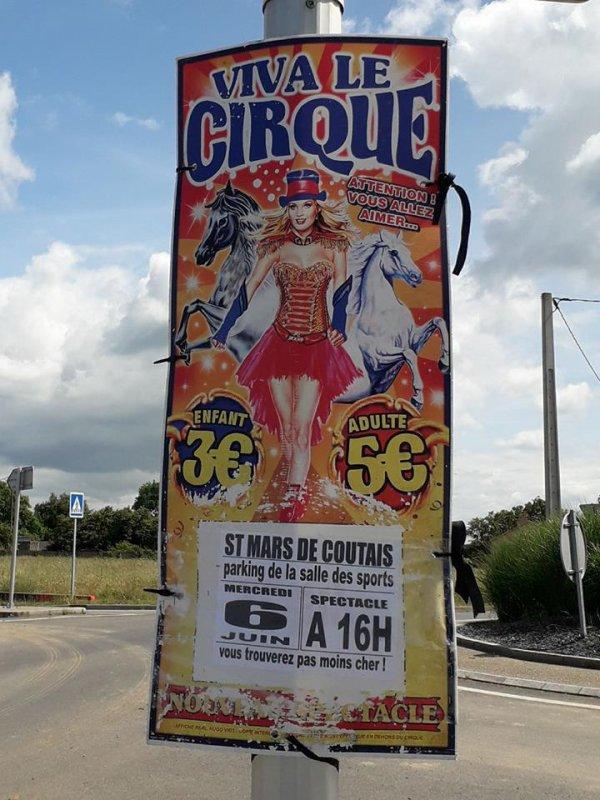 VIVA LE CIRQUE !!