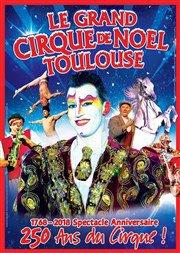 LE GRAND CIRQUE DE NOEL DE TOULOUSE !!