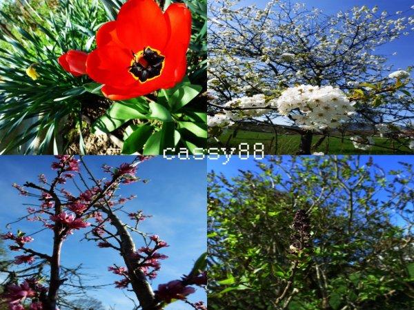 Le printemps et là