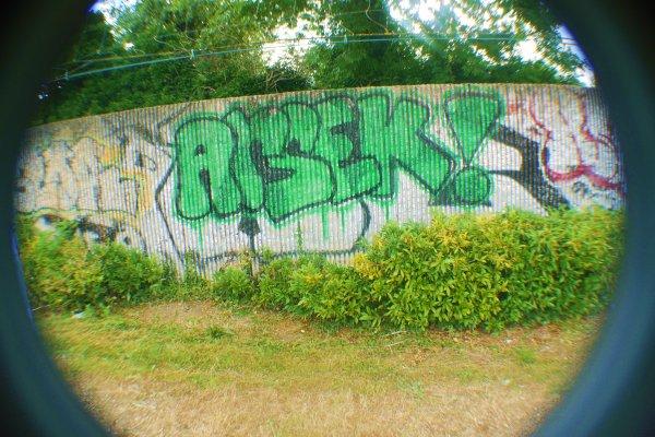 ARSEK