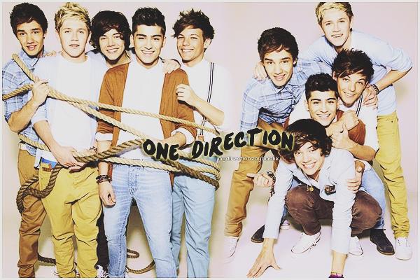 Présentation du groupe : One Direction ♥