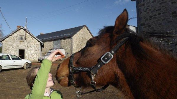 Poney bientôt un an mon poney ... ♥ Cette chanson pour toi ! I Love You !!!!!  (2012)
