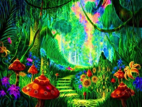 Welcome in Wonderland