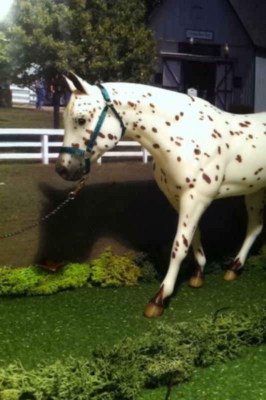 les chevaux de Lola
