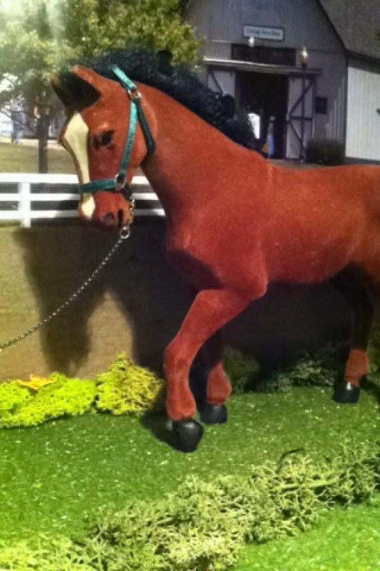 les chevaux de Johanna
