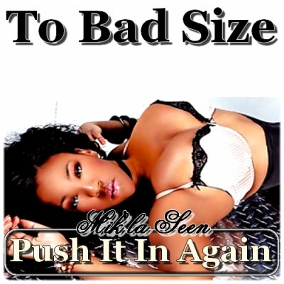 TO BAD SIZE / Push it in Again_{2BS_RekOrdz} (2012)