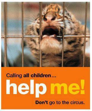 Life of Pi - Official Trailer (HD) un tigre, un reve un homme,  SORTIE DANS LES SALLES LE 19/12/2012 EN FRANCE, MA NOTE 8/10