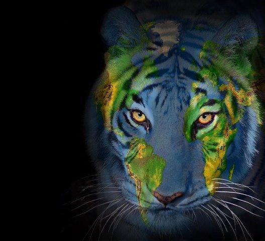 forte intense, comme notre désir, notre souffrance, notre combat,