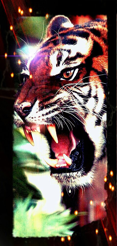 dans l'enfer du tigre combien serons-nous en 2022