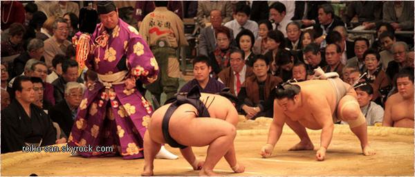Stéréotypes sur le Japon!