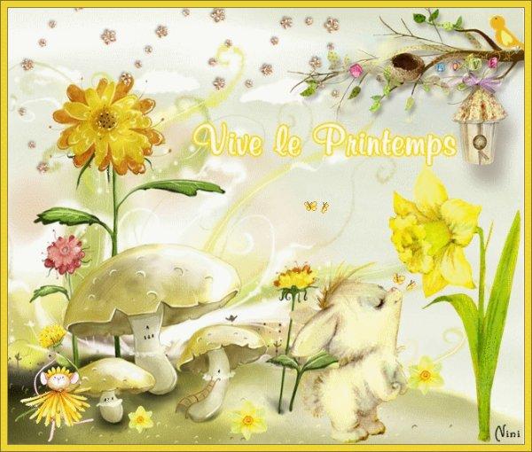 21 mars premier jour du printemps que ce soit le printemps dans vos coeurs et dans votre - 1er jour du printemps ...