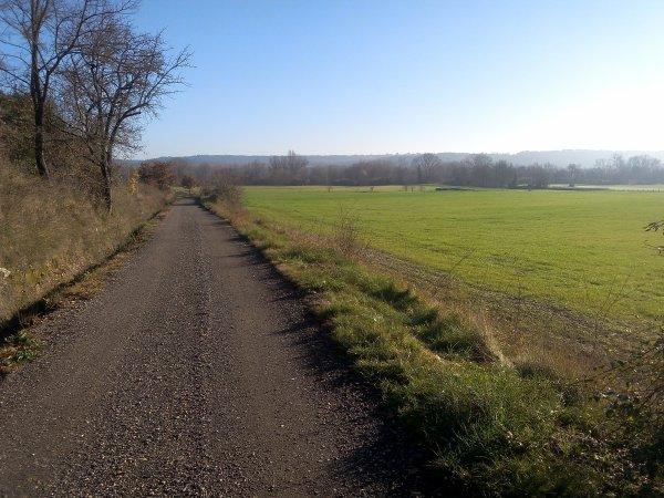 Sortie à vélo plaine de Montèze (Environs d'Alès) jeudi 22 décembre 2016