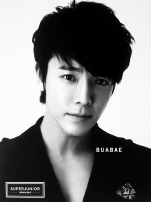 Membre des Super Junior (Part 2)