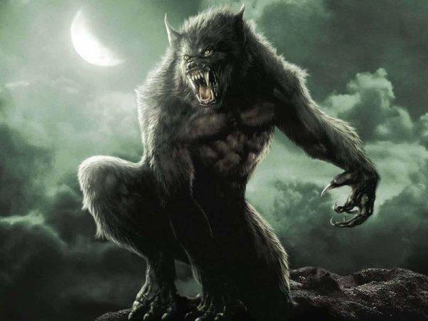 les loup-garoup apelé aussi les Lycans