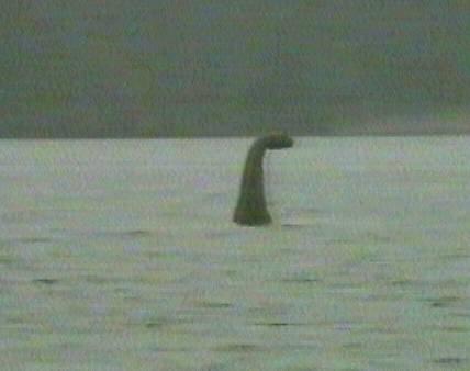 Caddy, le Nessie canadien filmé et montré au grand public