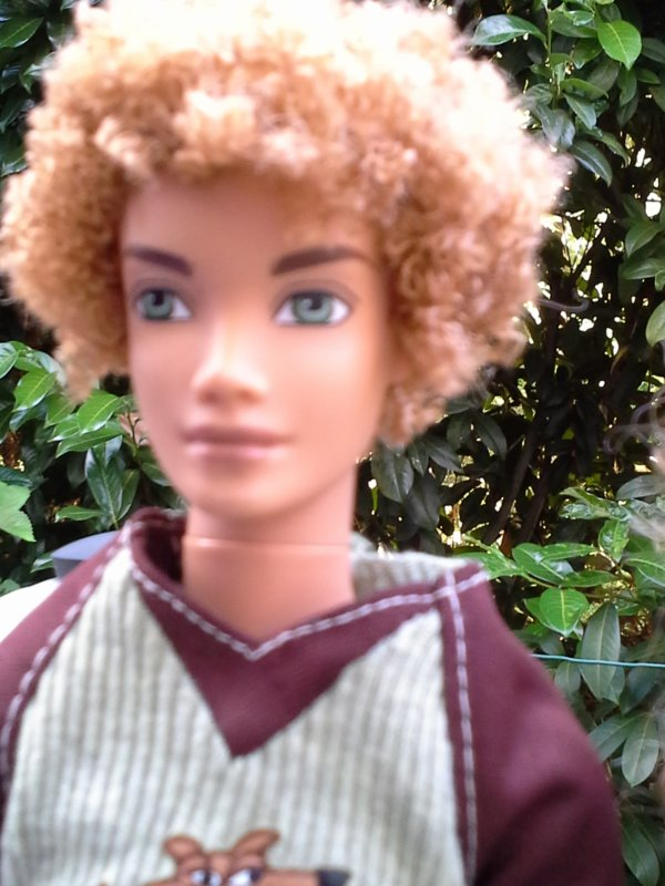 Barbie my scene