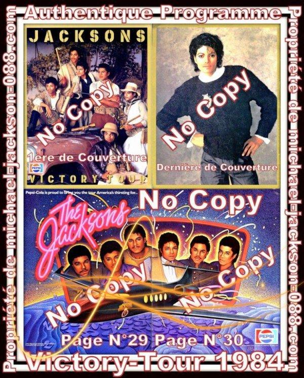 Authentique Programme du Victory-Tour datant de 1984 !!!