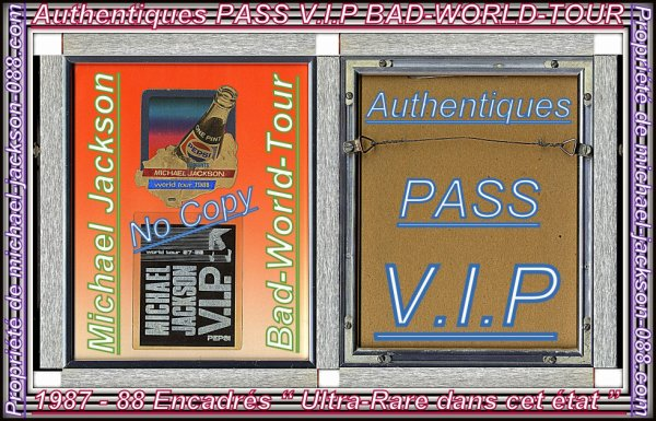 Authentiques PASS V.I.P Encadrés du BAD-WORLD-TOUR 1987 - 1988 !!! :