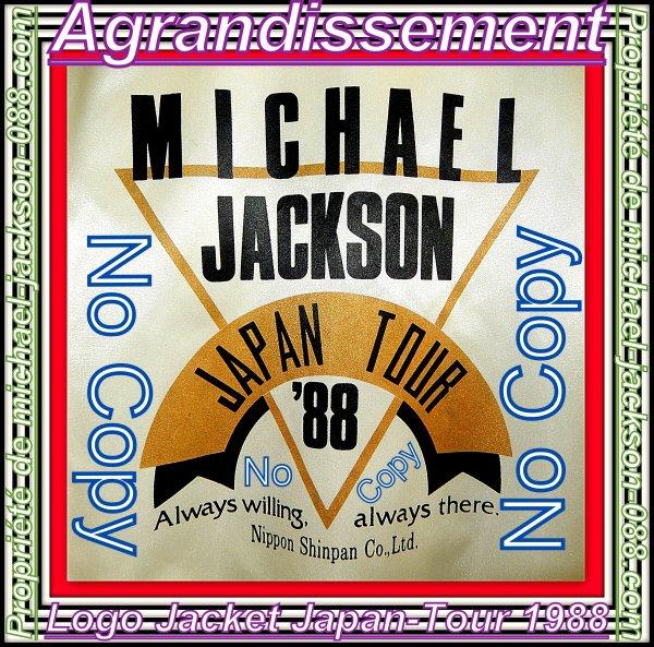 Article Surprise Spécial Anniversaire pour les 6 Ans de la Disparition de Michael Jackson :