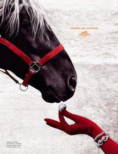 Publicités avec des chevaux